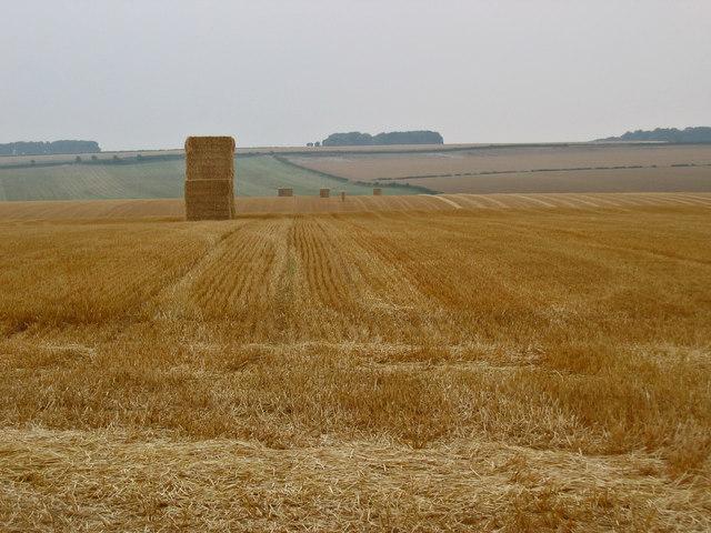 Holme Wold Farmland