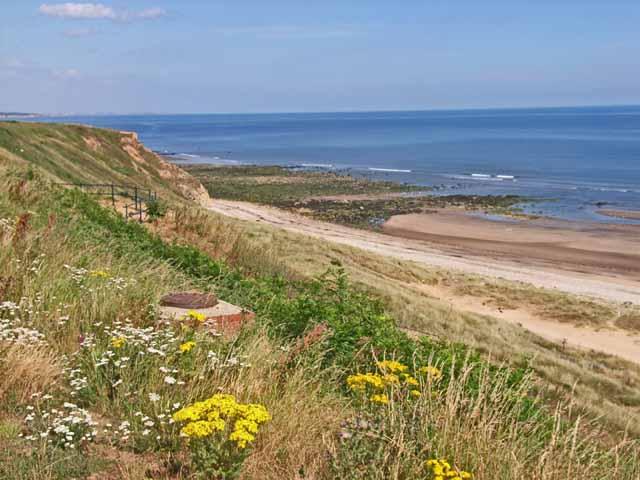 Cliffs and beach at Crimdon