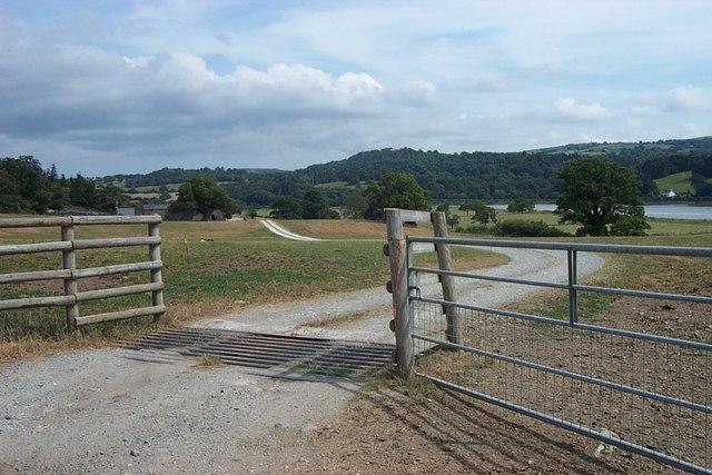 Cattle Grid Entrance to Llwydfaen Farm