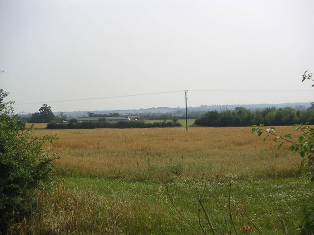 Lower Rectory Farm Fields