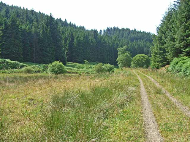 The track down the Kershope valley