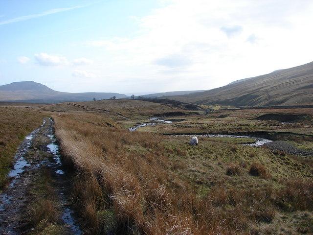 Track between Blea Moor and Ribblehead