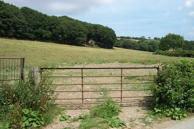 Gate to Field near Coed Baclaw