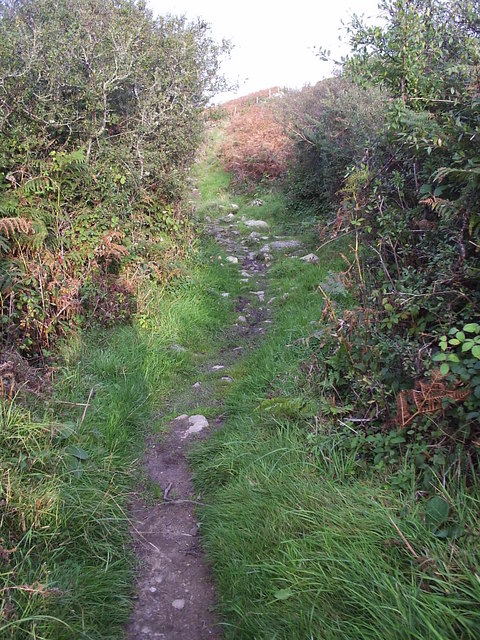 Another piece of the Pembrokeshire coast path