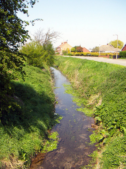 The Beck