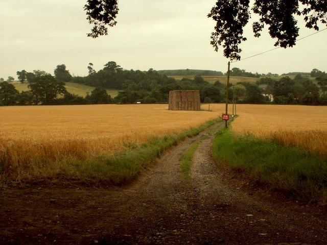 Approach to Pinchpools Farm, Manuden, Essex