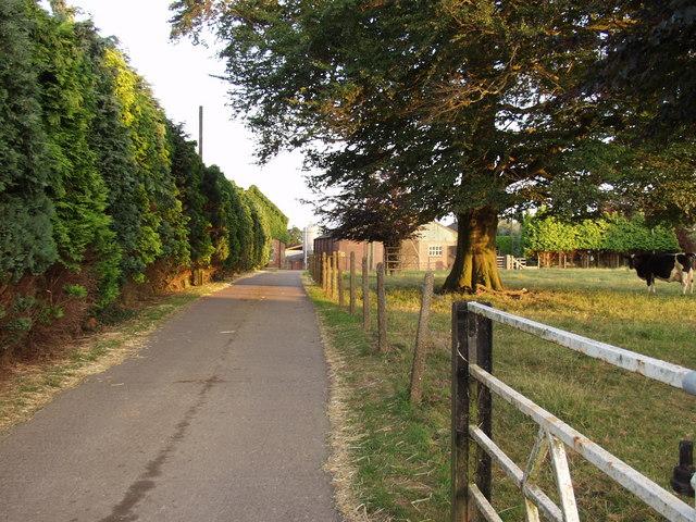 Farm Buildings at Drenewydd