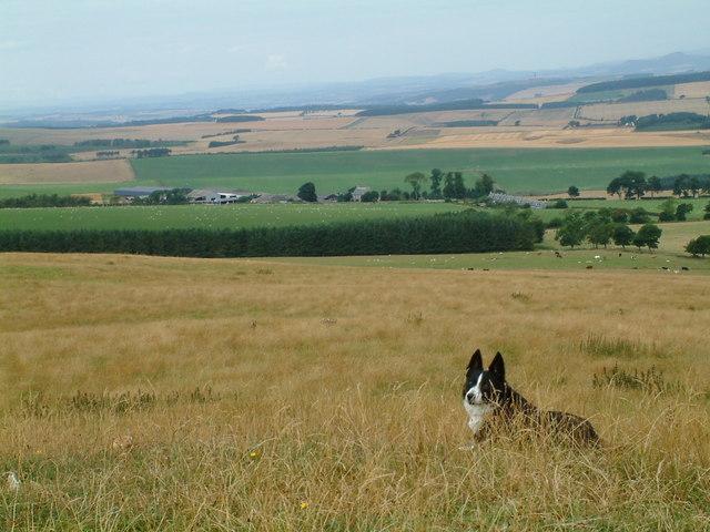 Overlooking Whitton Farm