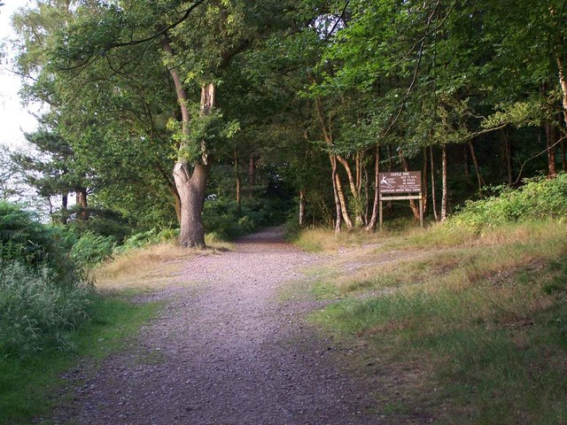 Footpath Up To Castle Ring