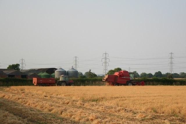 Harvest at Westbrecks Farm