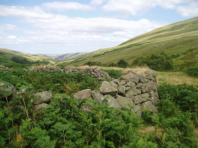 Old Sheep Stell in Harthope Valley