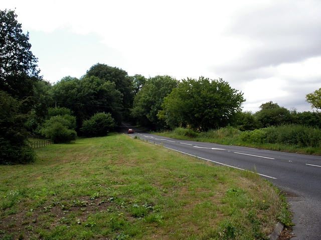 A33 near Butcher's Copse