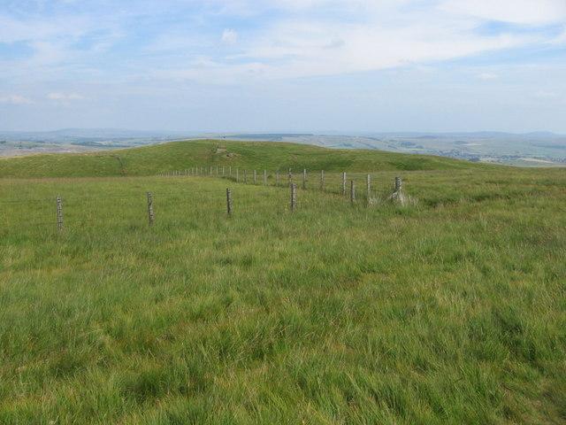 Blarene Hill