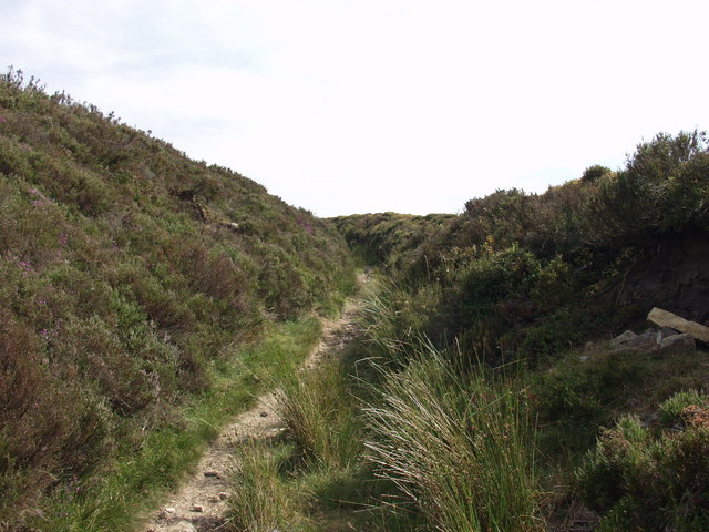 Well worn path into Esclusham Mountain