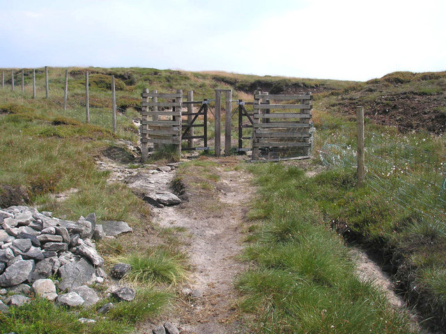 Double kissing gate