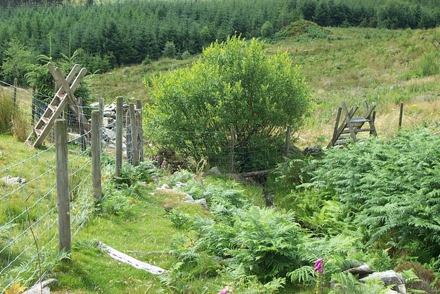 Pair of stiles near Clogwyn Llwyd