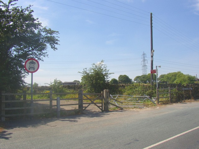 East end of Bridge Lane, Shelf