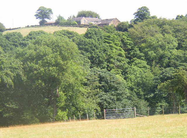 View of Jaque Royd from Bridle Stile, Shelf