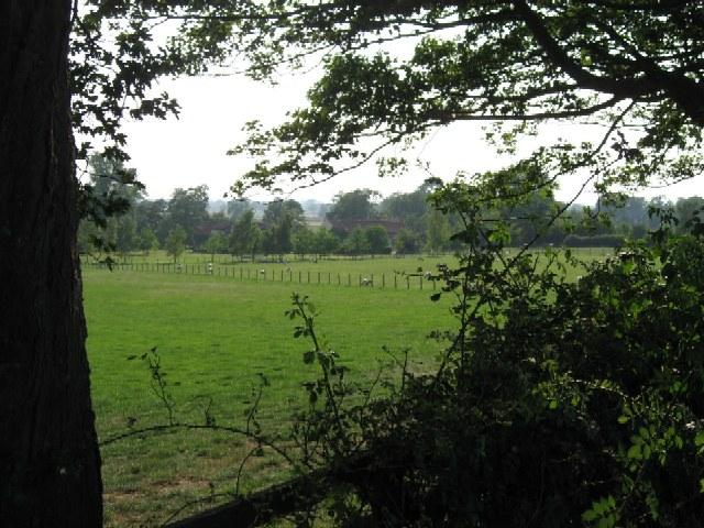 Black Collar Hall Farm
