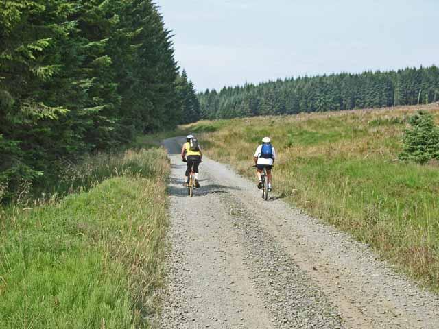Forest road near Akenshawburn, Kielder Forest