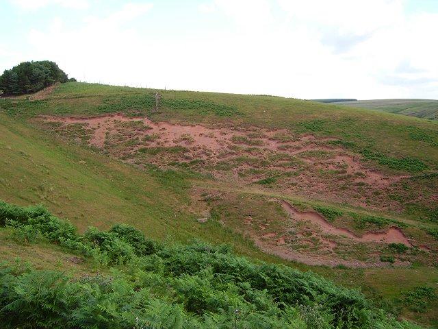 Rabbit erosion