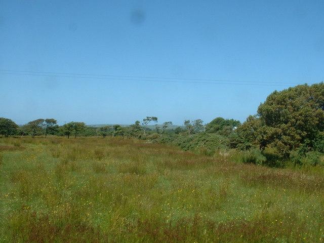 Farmland near Ty'n Rhos Neigwl