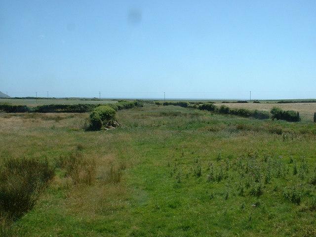 Narrow field near Bodrhiw