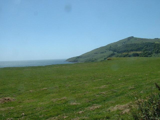 Clifftop field near Rhiw