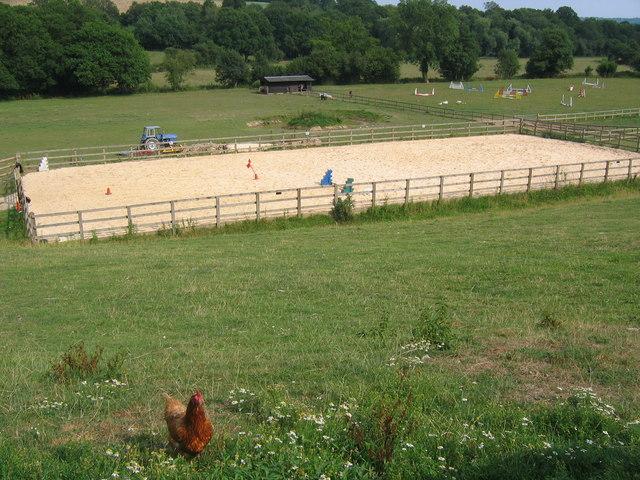 Sand school and horse paddocks