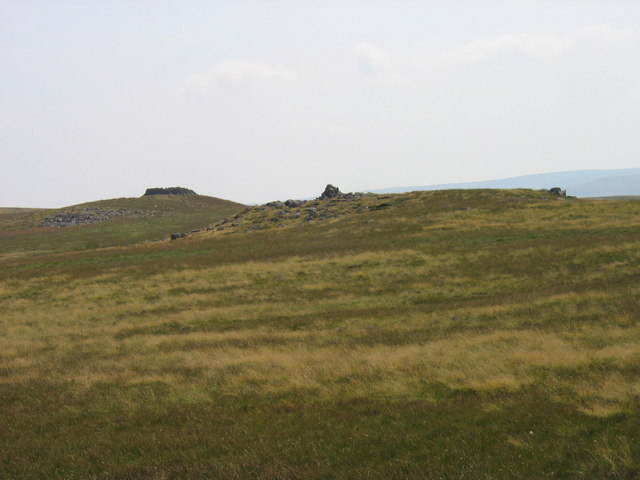 Cairn and sheepfold near Long Hill on Stanhope Common