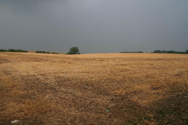 Farmland by the A47