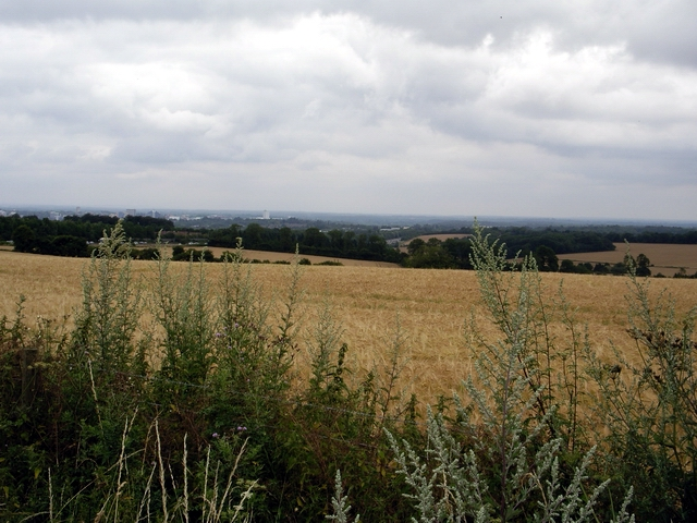 View from the Farleigh to Hatch Warren Road