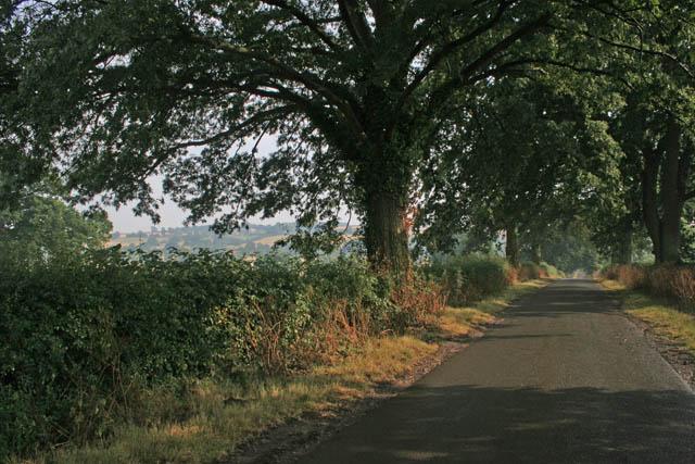 Wing Road, Lyndon