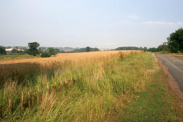 Countryside near Lyndon.