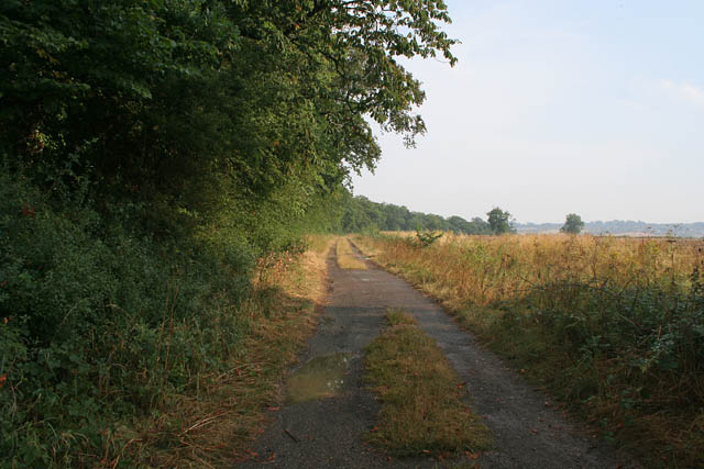 Bridleway to Wing