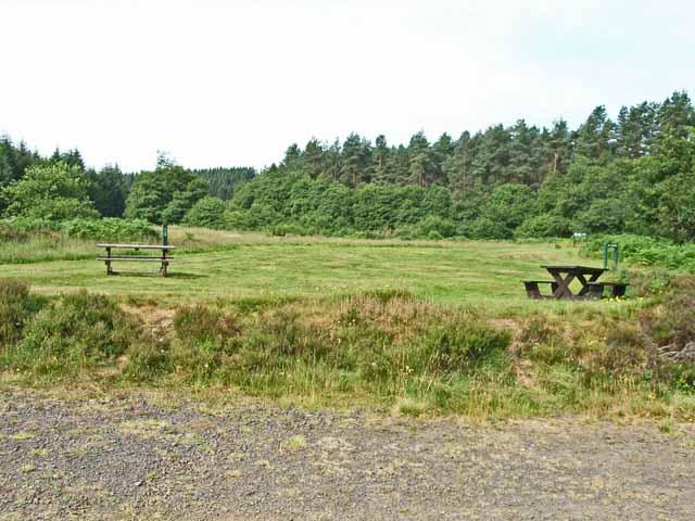 Lewisburn Picnic Site, Kielder Forest