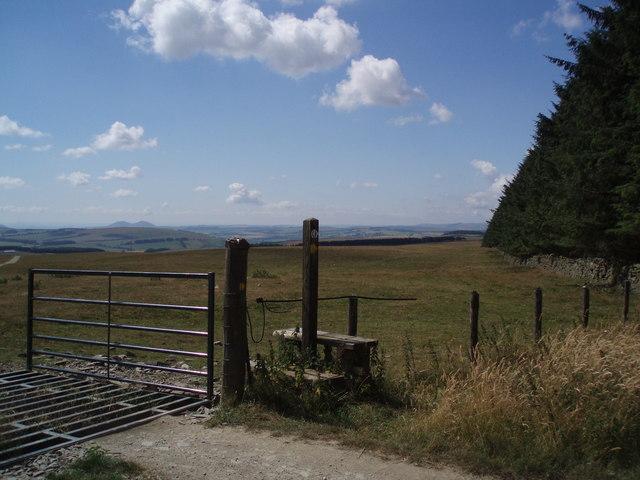 Eildon View