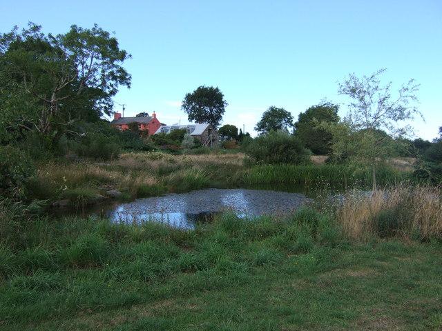 Pond below Dyffryn Fernant