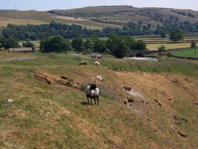 Sheep at Sleets Gill
