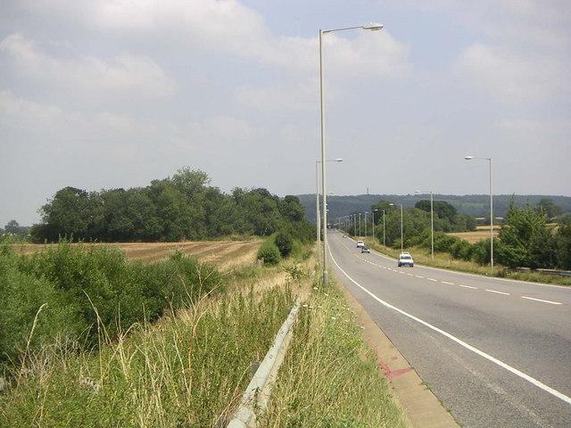 Galley Lane Spinney