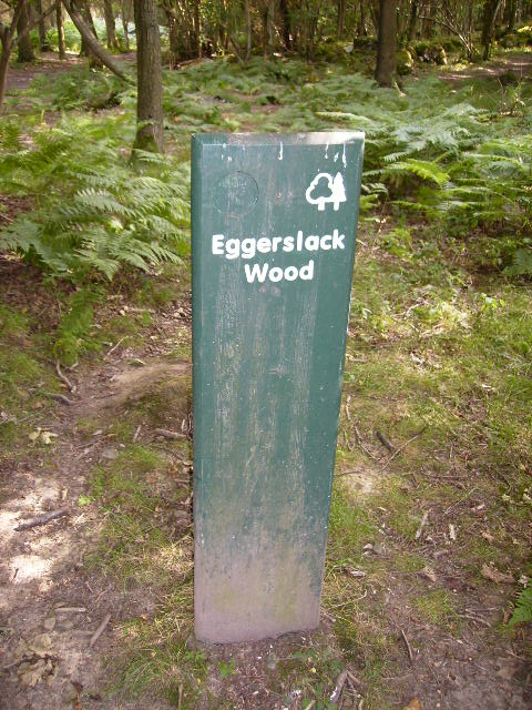 Signpost in Eggerslack Wood