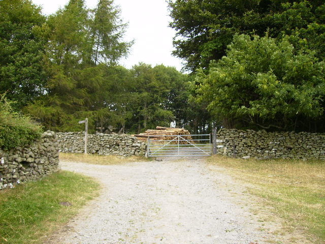 The track near Mount Barnard on The Cistercian Way