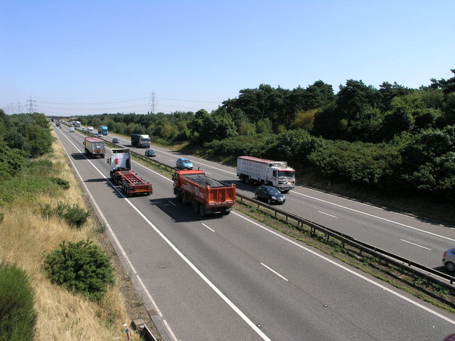 Motorway and Trees
