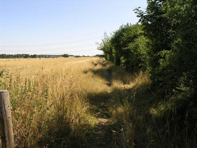 Bridleway to Branton