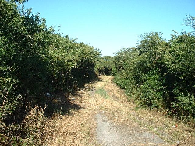 Lane at Meyllteyrn