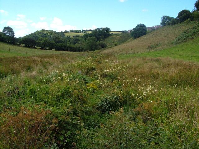 Valley near East Allington