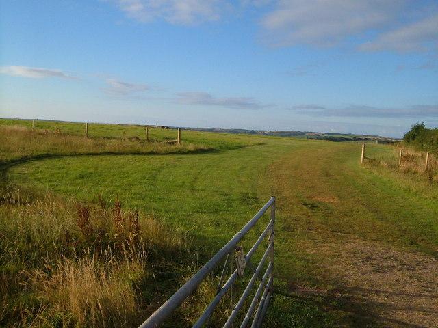 Halwell airfield