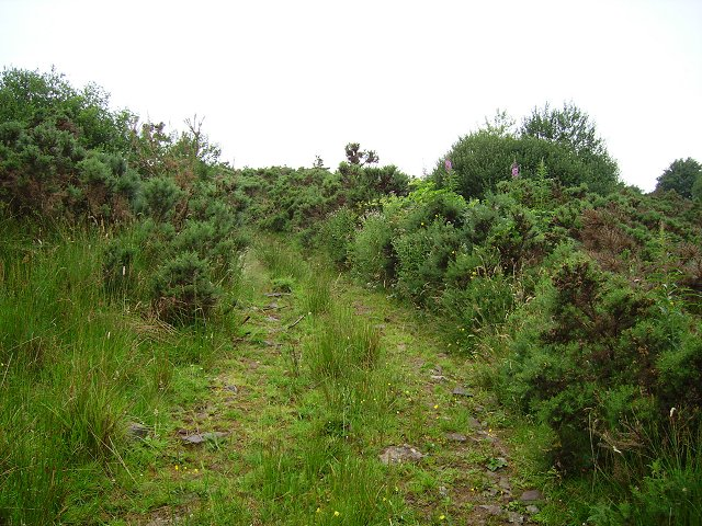 Lennieston Muir