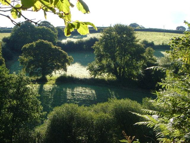 Across the Gara valley from Blackawton Footpath 7