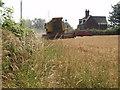 SJ5679 : Combining Wheat, Aston Heath Farm, Aston Lane by Ian Warburton